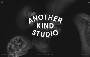Screenshot of the Another Kind website